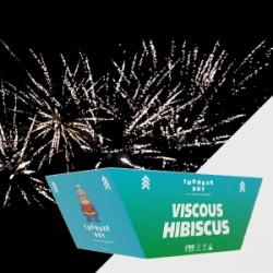 VISCOUS HIBISCOUS